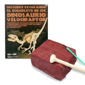 Excavadinos Velociraptor Paleontologia